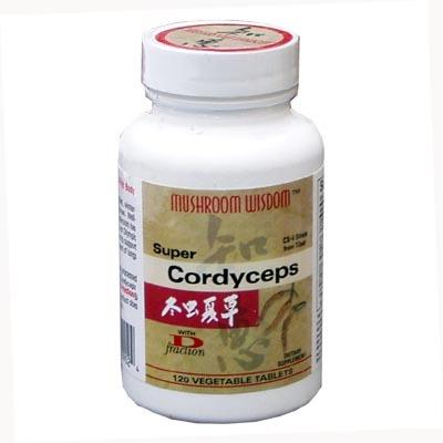 동충하초 Cordyceps