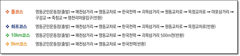 제15회 영동포도축제 중 전국 영동포도마라톤대회 모습